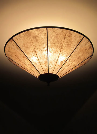 c318 Round Alkyd Mica Ceiling Light with Skeleton Leaves