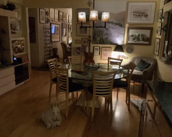 Sue Johnson's Benecia client lamp dining area